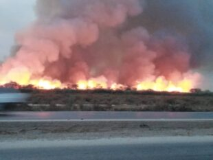 نامه جمعی از اصحاب رسانه خوزستان به دادستانی در مورد خطر آلودگی های صنایع نیشکر